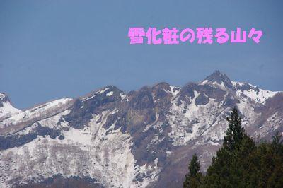 ★妙高高原 その2 トレッキングと犬